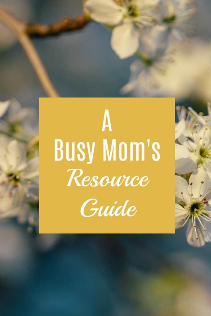 """image of flowers with yellow box reading """"a busy moms resource guide"""""""