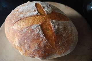sourdough bread loaf with wheat germ and rosemary