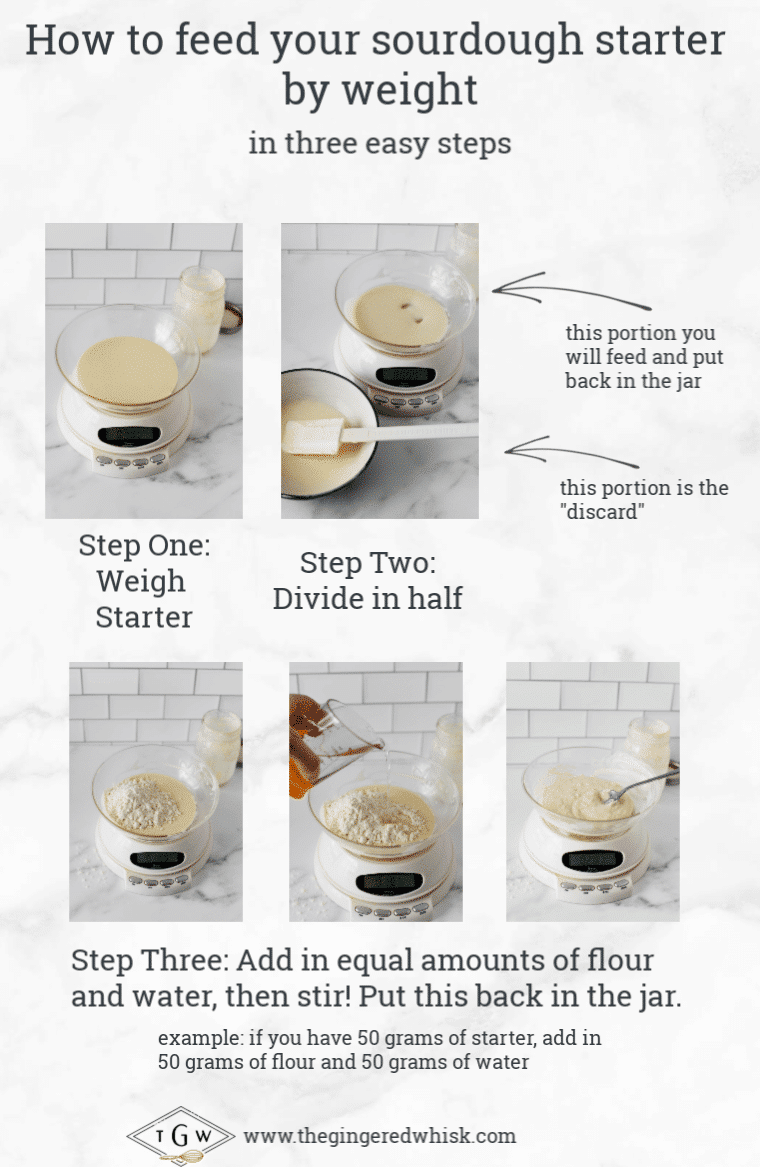 collage of images showing how to feed sourdough starter by weight
