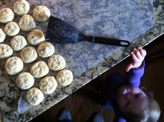 toddler sneaking baked cookie off of counter