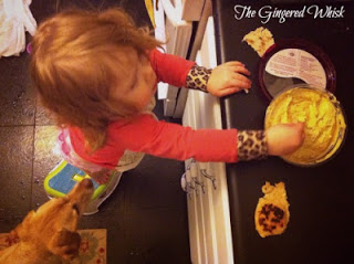 toddler eating sourdough naan and hummus