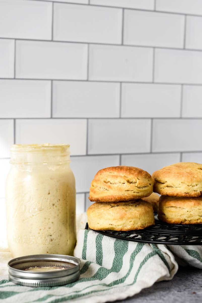sourdough biscuits stacked on cooling rack beside jar of starter