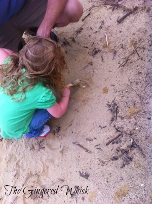 girl digging in sand