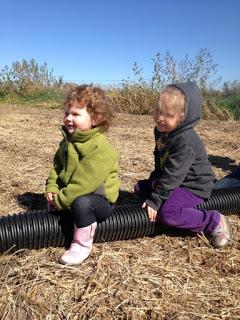 two little girls sitting in a field