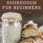 sourdough starter in jar next to bread loaf cut in half